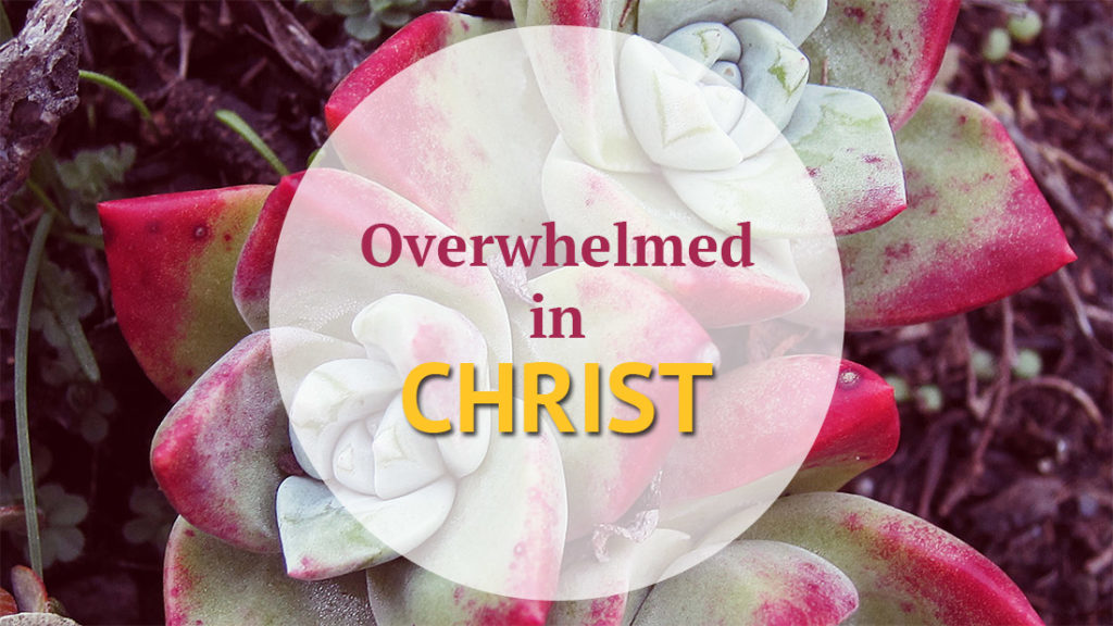 overwhelmed in Christ