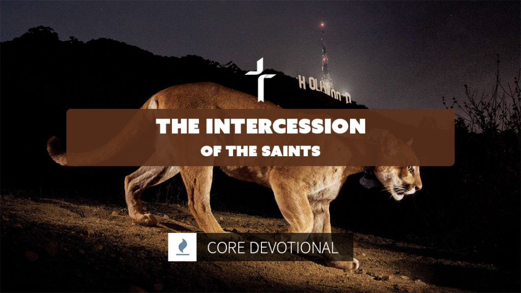 intercession of the saints