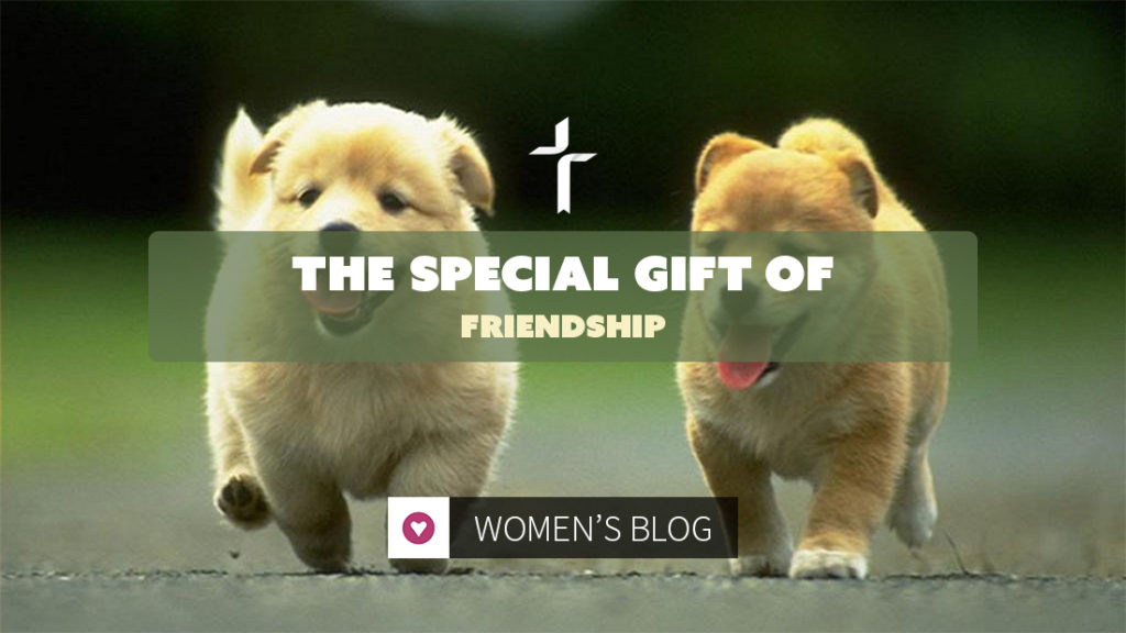 special gift of friendship