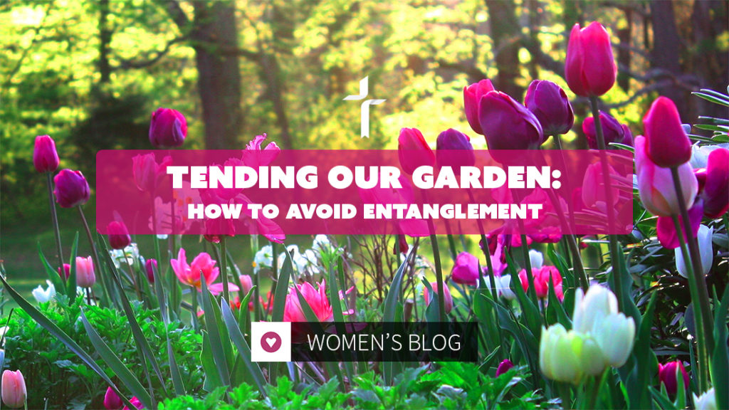 tending our garden: how to avoid entanglement