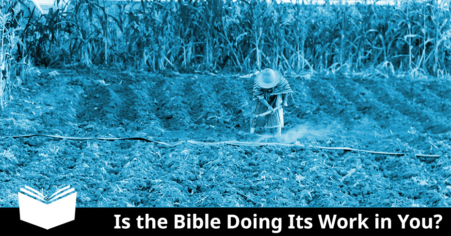bible doing work in you