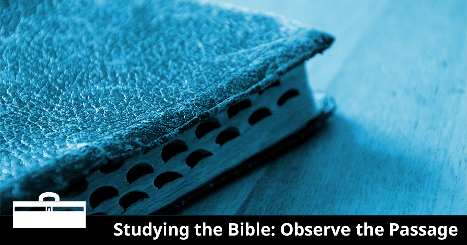 studying the bible observe the passage